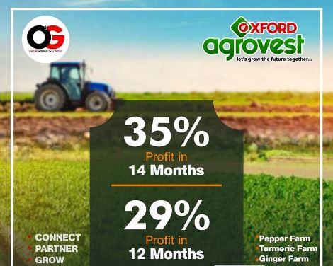 oxford International Group Investment agrovest buildvest